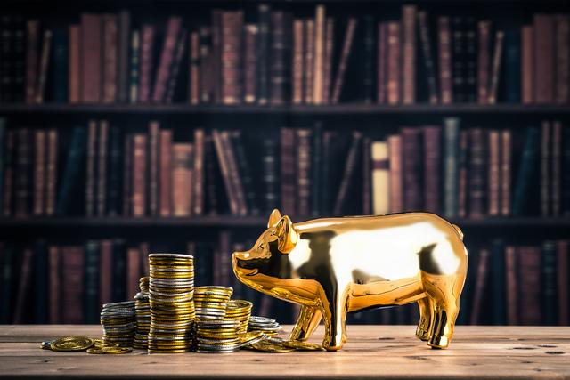 お金と向かい合う金色の豚